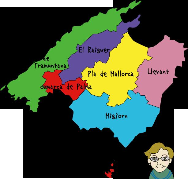 6つの地区分類