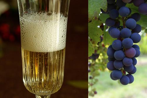 スペイン新年用のカヴァとブドウ