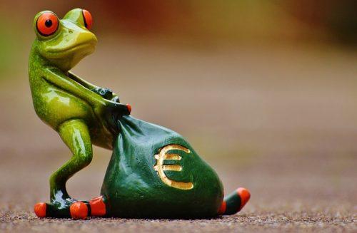 ユーロ袋を引きずるかえる