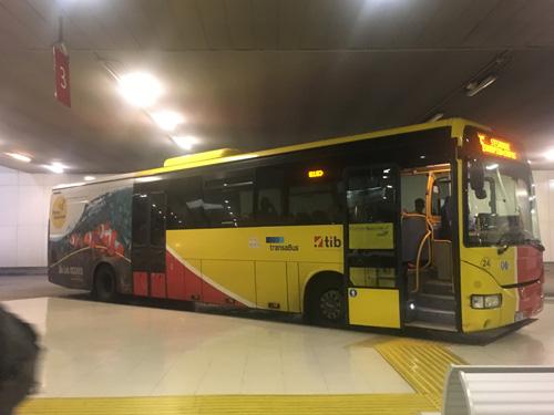 TIBバス