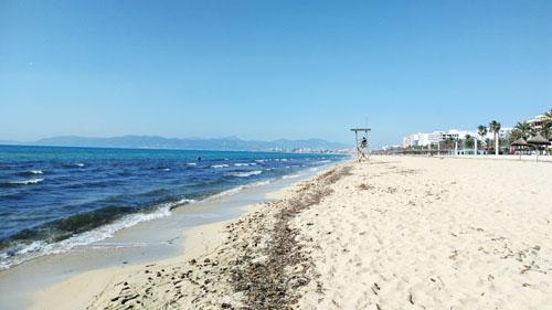 マヨルカビーチ2月