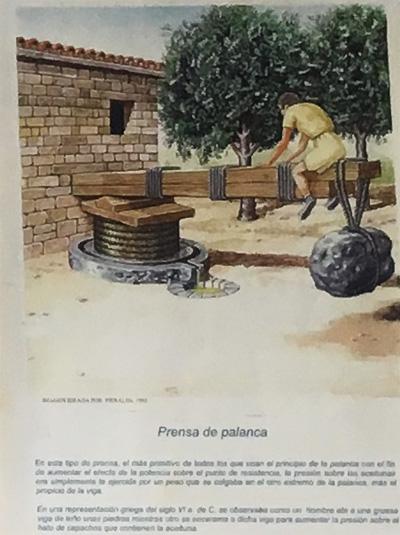 古代のオリーブオイル製造方法6