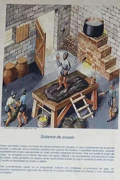 古代のオリーブオイル製造方法5