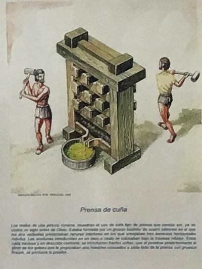 古代のオリーブオイル製造方法4